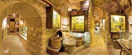 Musée du Vin