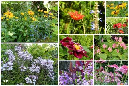 Les jardins de la boirie saint pierre d 39 ol ron for Entretien jardin oleron