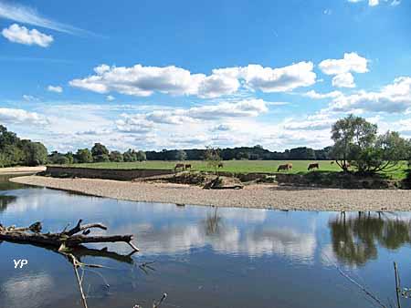 Bocage de Noirlac et rivière le Cher