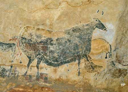 Le Thot - la Vache Noire