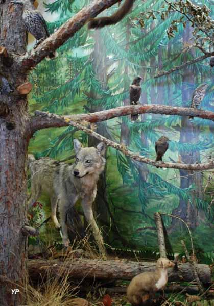 Ecomusée le Refuge des Animaux