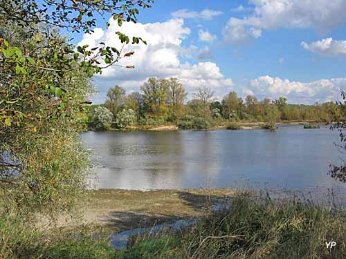 Réserve naturelle du Val de Loire
