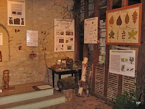 Ecomusée de la Vallée de l'Aigre - exposition Auprès de mon arbre