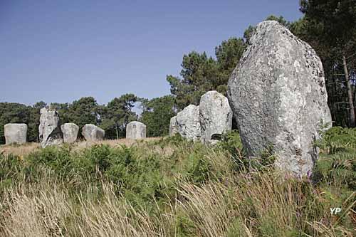 Alignements de Carnac - Maison des Mégalithes