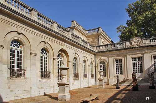 Musée Calvet et musée Lapidaire