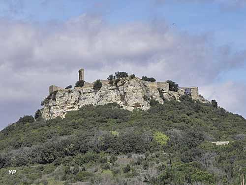 Château de Gicon