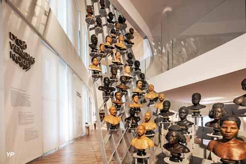 Musée de l'Homme - L'envolée des bustes