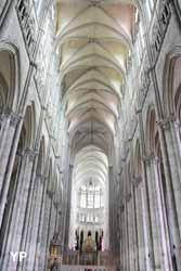 Amiens, cathédrale Notre-Dame - la nef