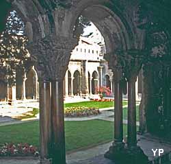 Abbaye de Montmajour - le cloître