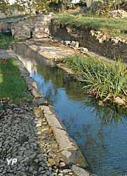 Site archéologique de Tholon