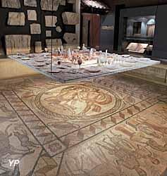 Musée départemental des antiquités - salle gallo-romaine (V. Deslandes CG76)