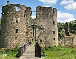 Château de Ranrouët (Château de Ranrouët)