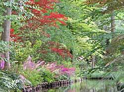 Arboretum des Prés des Culands-Conservatoire National d'Ilex