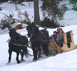 en traîneau sur la neige