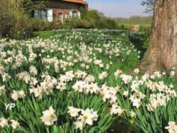 Wouwenberghof - Jardin de la ferme du Mont des récollets