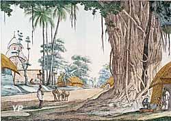 Route dans le Bengale