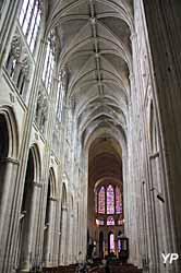 Cathédrale Saint-Gatien - nef