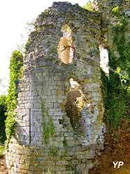 Vieux Château (Nathalie Velin)