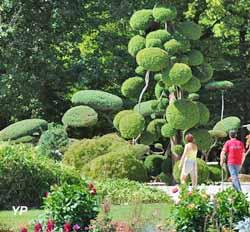 Parc Floral de la Source - jardin zen (Julie Danet)