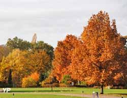 La Grande plaine en automne