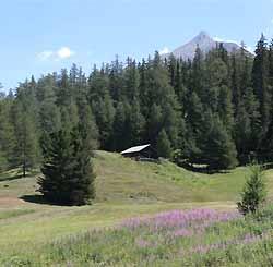 la montagne en été à La Norma