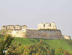 Château de Coucy (OT Coucy-le-Château)