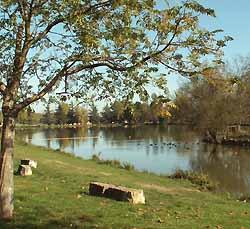 lac de Bellevue à Lisle-sur-Tarn (doc. OT du Pays Lislois)