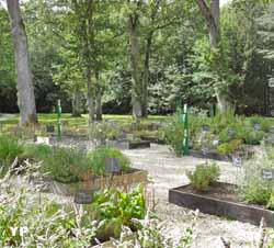 Jardin d'Antonin