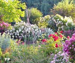 Jardins de Roquelin (doc. Jardins de Roquelin)