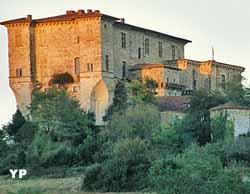 Château de Lavardens (Château de Lavardens/Guy Pégot)