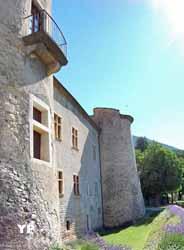 Château de Montmaur (Communauté de communes des Deux Buëch)