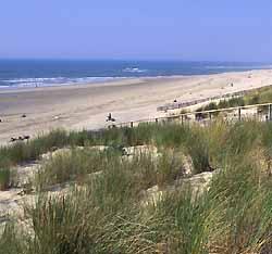 plage de Lacanau (doc. CRTA / JJ Brochard)