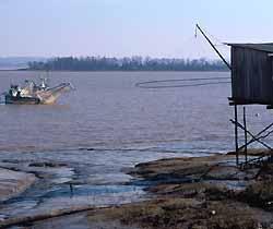 estuaire de la Gironde (doc. CRTA / JJ Brochard)