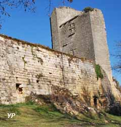Forteresse de Miremont (Christine Laurent)