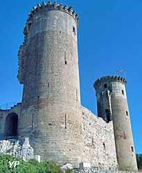 Château des comtes de Provence (OT Châteaurenard)