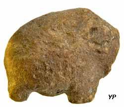 Petit mammouth