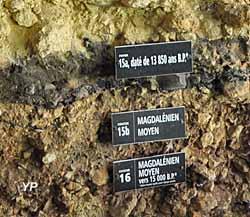Abris de Laugerie Basse - stratigraphie
