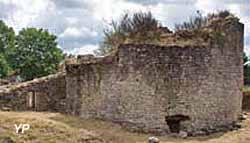 Vestiges du château de Monisme
