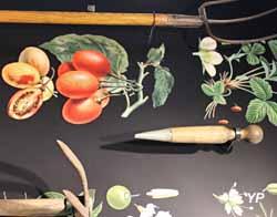 Vie quotidienne - outils de jardinage
