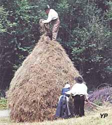 Réalisation d'une meule de foin en montagne