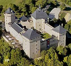 Château de Malbrouck (La France vue du ciel photo Gérard Borre MRW Zeppeline)