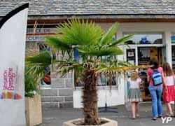 C tes d 39 armor informations touristiques d marches - Office du tourisme saint quay portrieux ...