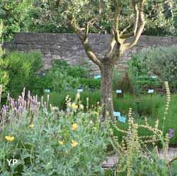 Jardin Médieval (Jardin Médieval)
