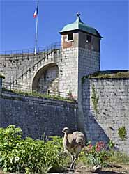 Fortifications de Vauban - nandou