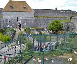 Fortifications de Vauban - le zoo
