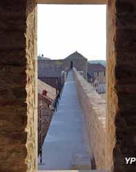 Site templier et hospitalier la Cavalerie