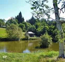 Arboretum du château de Neuvic d'Ussel (lArboretum du château de Neuvic d'Ussel)
