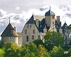 Château de Châtillon (Château de Châtillon-en-Bazois)