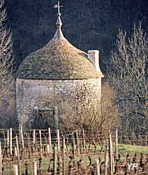 Pavillon de vignes de Macheron