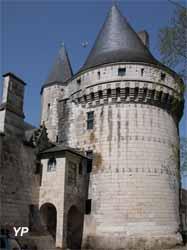 Château d'Argy -tour de Brillac